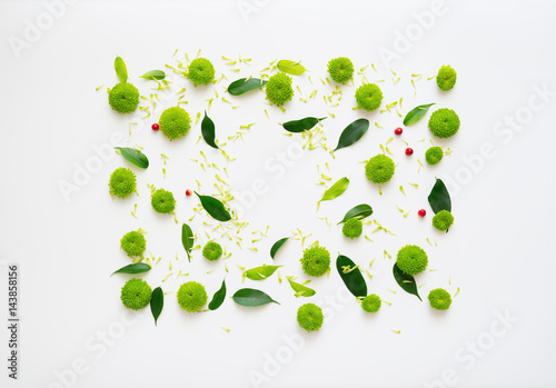 Pattern with petals of chrysanthemum flowers, ficus leaves and ripe rowan on white background. Overhead view. Flat lay. - 143858156