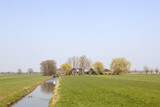 farm in meadows near utrecht in the green heart of holland on sunny day in early spring