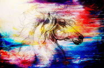 Drawing horse on old paper, original hand draw. Color effect.