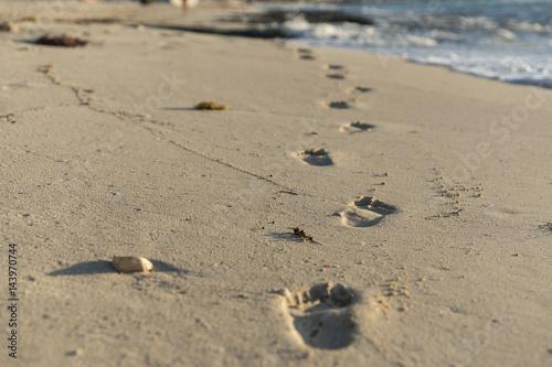 Spuren am Strand