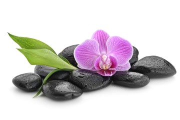 zen basalt stones ,orchid and bamboo © Pavel Timofeev