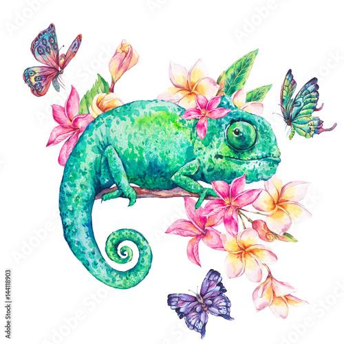 Akwarela zielony kameleon z motyle, kwiaty