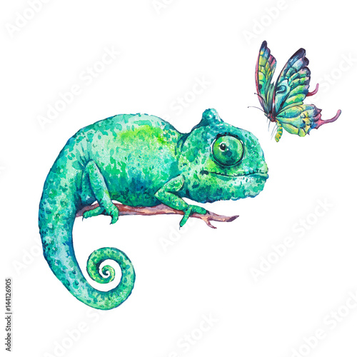 Fototapeta Watercolor green chameleon with butterflies