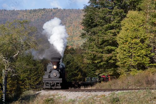 Old Steam train in fall scenery  Poster