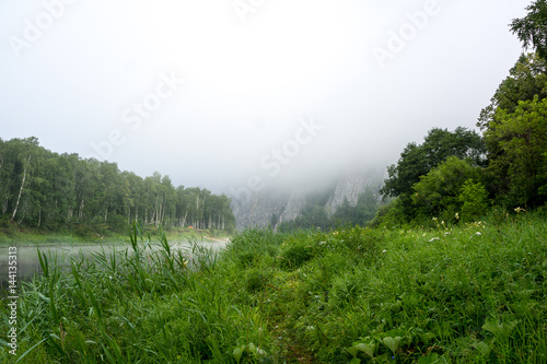 Poster Fog forrest and river in the woods