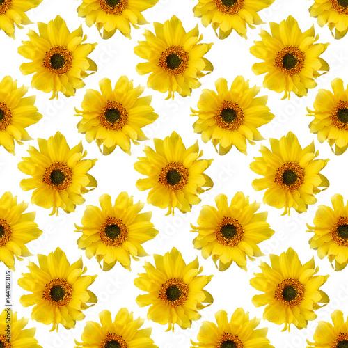 floral background - 144182386