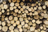 Wooden rods for drying