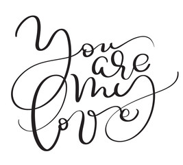 You are my love vector vintage text on white background. Calligraphy lettering illustration EPS10