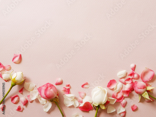 Little roses on pink textured paper.  Gentle romantic background. - 144318965