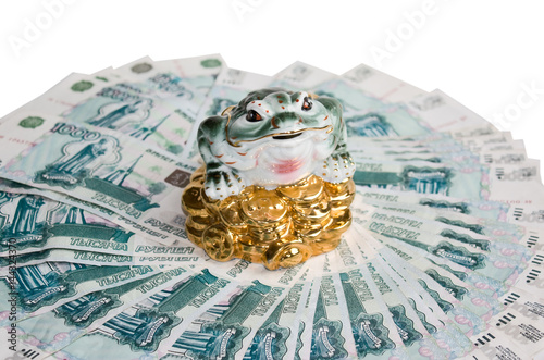 Chinese Feng Shui Frog with coins symbol of money and wealth is sitting on the b