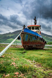 Abandoned shipwreck on shore in summer, Scotland