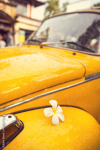 Flower Power - flower on a yellow vintage hippie car Poster