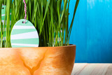Easter eggs in green spring grass.