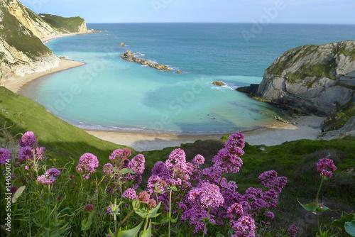 Man of War Bay near Durdle Door, Dorset, England UK The Jurassic coast a UNESCO Poster