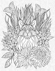 coloring page with a lynx