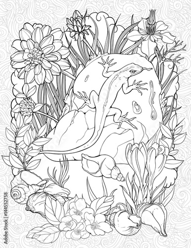 coloring page with a lizard on a stone