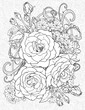 coloring page with three roses