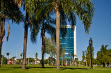 A modern building is seen over palm trees at the center of Tigre city