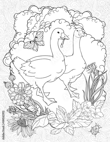 coloring page with two walking gooses