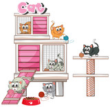 Cats playing in cage