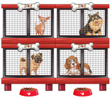 Four types of dogs in cage