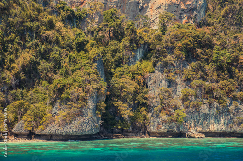 Poster Cliff and the clear sea Phi Phi islands south of Thailand.