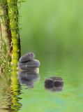 composition aquatique avec bambous à noeud et galets
