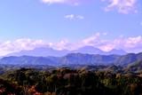 岡城の紅葉
