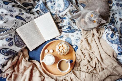 book, coffe, cat
