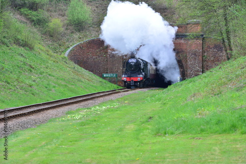 The flying Scotsman steam engine exiting a tunnel in Sussex in springtime Poster