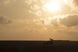 Fotografando il tramonto sul mare