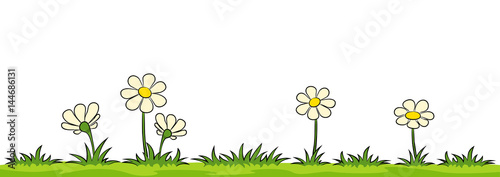 Flowers on a meadow against white background - 144686131