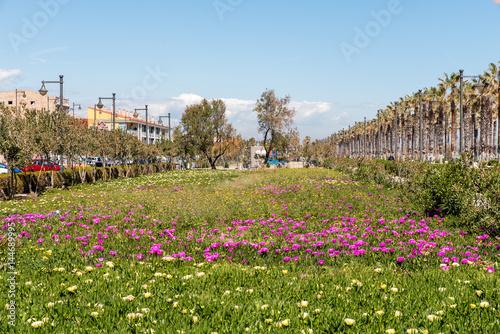 Palmen und Strandpromenade von Valencia