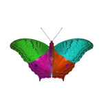 colorful of butterfly ,isolated on white