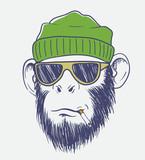 cool monkey smoking a cigarette - 144704975