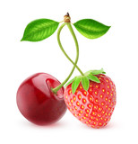 Isolated berries. Sweet cherry and strawberry fruits on one stem isolated on white background with clipping path