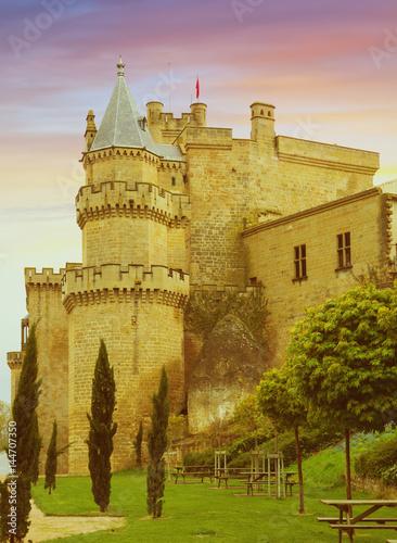 old medieval castle Poster