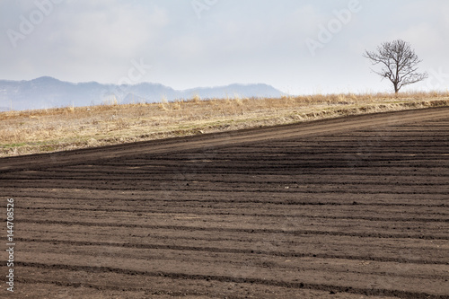 春の畑と山なみ