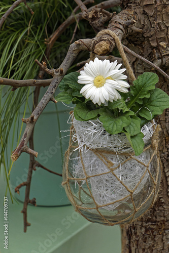 garden decoration with white flower, greeting card Poster