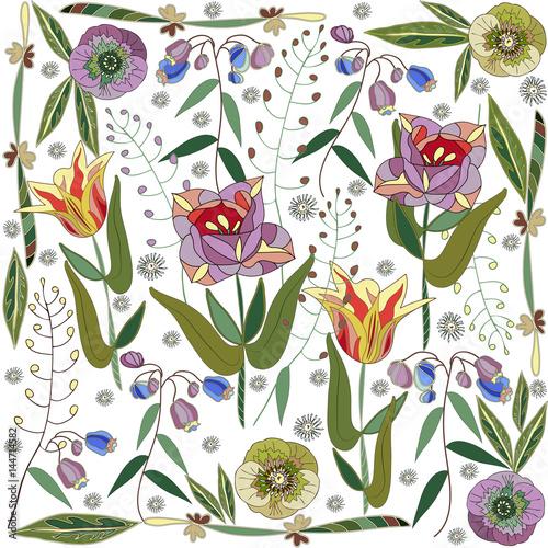Fototapeta Fantasy garden of hellebore flowers and tulips. White background.