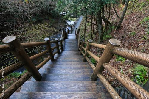 徳島県三好市 黒沢湿原 たびの尻滝への遊歩道