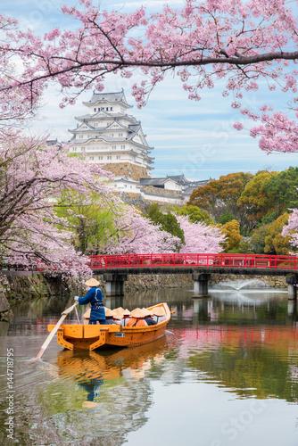 Himeji Castle with beautiful cherry blossom in spring season at Hyogo near Osaka, Japan Poster