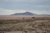 Stony Desert with Mountains and Trees between Walvis Bay and Solitaire in Namibia