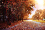 blurred background path in autumn city park