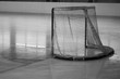 hockey goal on ice, rear view