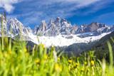 Villnösstal in Südtirol, Blick zur Geisslergruppe