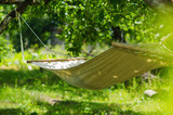 Summer garden with hanging hammock for relaxation - 144824344