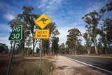 Kangaroo warning sign on the road in Australia.