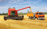 Harvester machine and tractor at harvest
