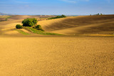Panoramic view of cultivated field in South Moravia, Czechia. Beautiful wavy fields.
